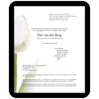 Bloemen rouwkaart 0202 tulp wit