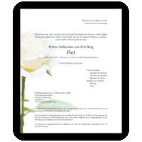 Bloemen rouwkaart 0203 Witte Roos