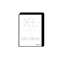 mega posters 250 x 100 cm