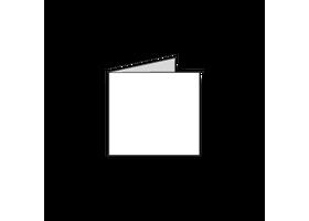 10 x 10 vierkante kaarten drukken